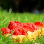 Erdbeertörtchen mit Vanillecreme, superschnell gemacht.