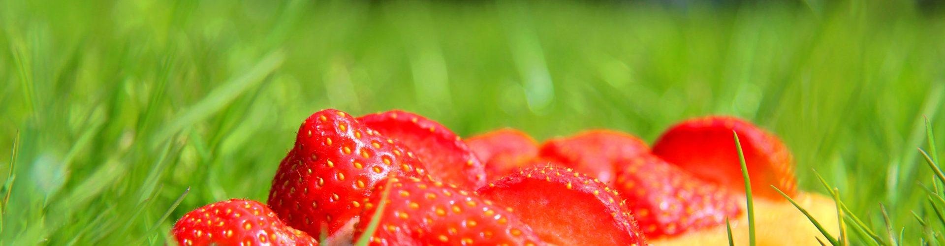 Superschnelle Erdbeertörtchen mit Schokosplittern